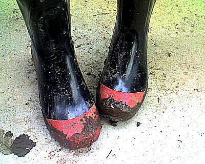 Bootsboost