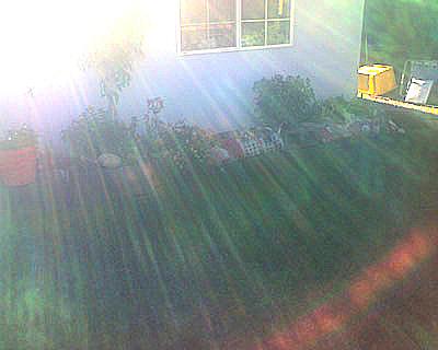 Sunlight2softenboost