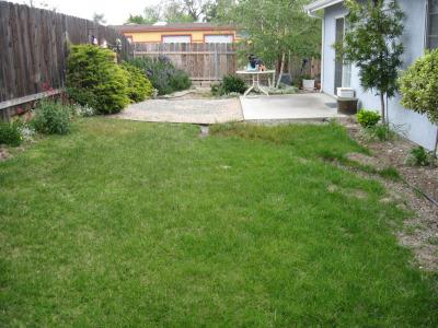 Backyard Before 004a
