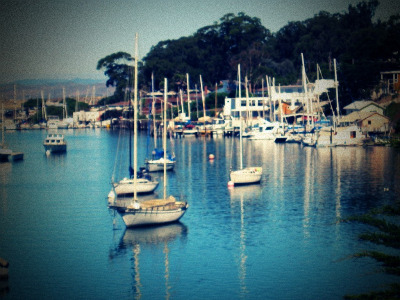Lomoboats1
