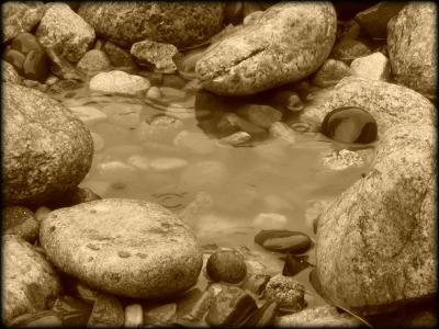 Tiny_Pond_sepia_picnik
