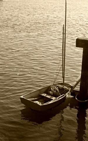 Sepiascenessailboat