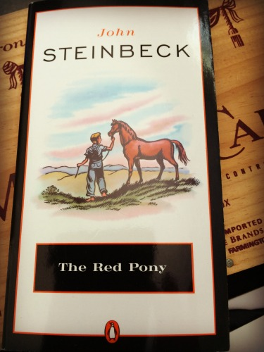 an analysis of the archetypes in the red pony by john steinbeck The archetypes listed here in boldface type are just a few of the many ancient patterns that exist in human consciousness many additional archetypes that are closely related are mentioned in parentheses, such as hermit (found under mystic), therapist (under healer), or pirate (under rebel) please read through the entire list, looking at all.
