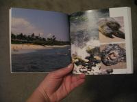 Insidebook1