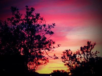Sunset112907