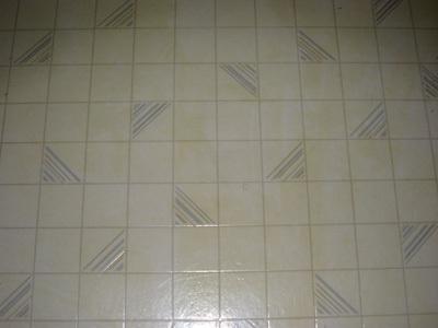 Floorbefore2