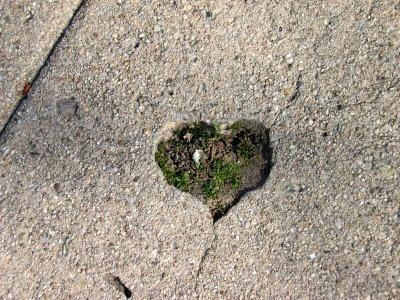 Heartshapedhole_2
